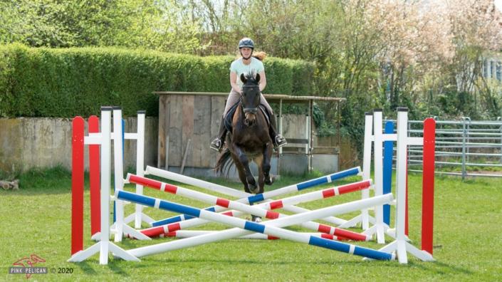 Pferd galoppiert auf Hindernisse zu
