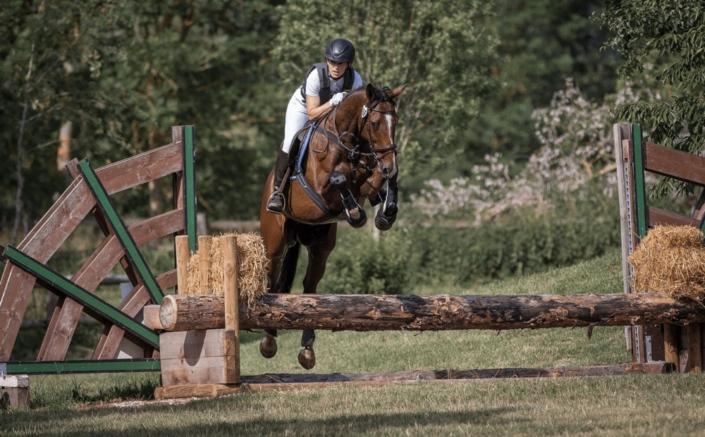 Pferd und Reiter springen über einen Baumstamm